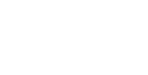 Microsoft Partner White Logo